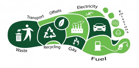 An infographic about what contributes to the carbon footprint
